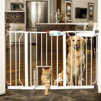 Carlson Extra-Wide Walk-Thru Gate with Pet Door